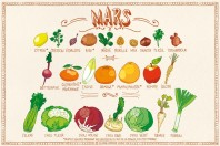 Fruits & légumes Mars